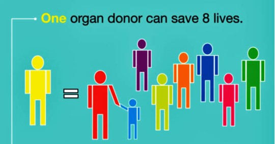 one-organ-donor-eight-lives
